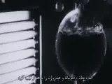 مستند سیاره ای به اسم زمین