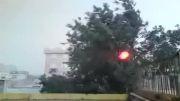 شکسته شدن درخت بر اثر باد شدید