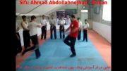 كونگ فو سی فو احمد عبد الله نژاد وینگ چون بوكان4