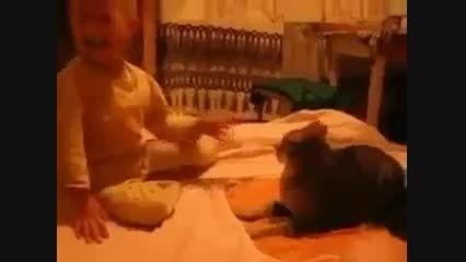 توگوشی بچه به گربه وتلافی گربه