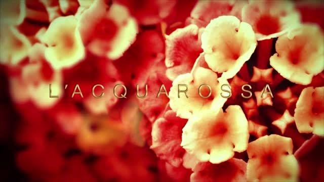 عطر سفیر - عطر زنانه لا آکواروسا فندی