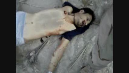 کشتن دو قاتل در کوهای شهر وحدتیه در استان بوشهر