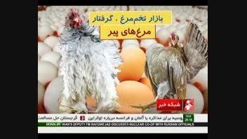 بازار تخم مرغ گرفتار مرغ های پیر