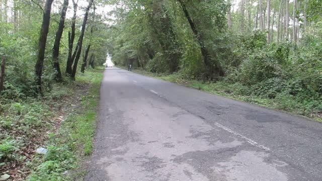 موتورسواری در جنگل های شمال