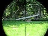 شکار خرگوش با دایستات