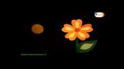کلیپ زیبا امام زمان (عج) -گروه سلمان فارسی