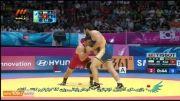کشتی: کسب مدال طلا توسط رضا یزدانی