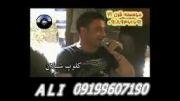 ماموستا نریمان محمود و شیروان عبداله و دانا سعید در سلیمانیه عراق