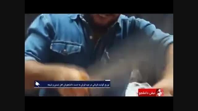 توزیع گوشت قربانی توسط دانشجویان شیعه و سنی