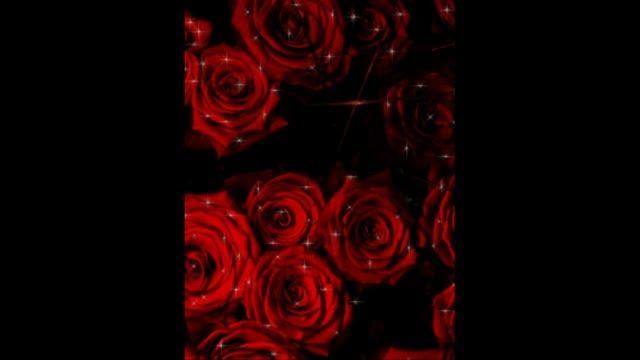 گل سرخ وحشی.... تقدیم به خودم و دنبال کننده هام