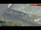 جسد نهنگ 30 تنی در استخر ساحلی سیدنی