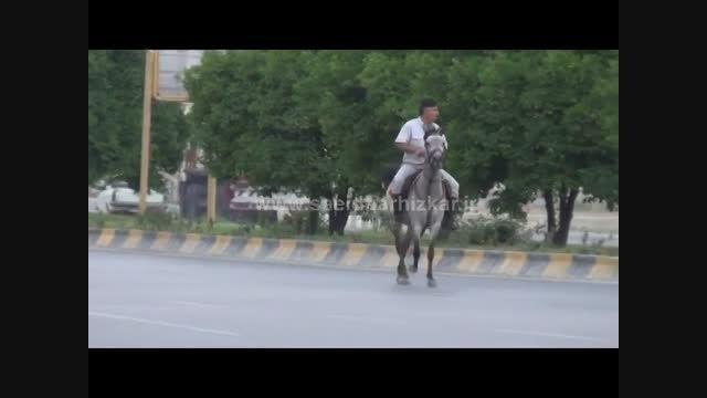 پونه (قسمت اول)|سعید پرهیزکار