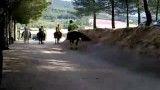 تک چرخ رفتن با اسب.از دست ندی