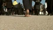 پیاده روی اربعیین روایت سید علی سجادی