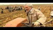 وله | برداشت محصول سیب زمینی در اردبیل |