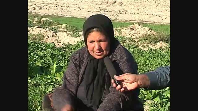 آرامش قره آغاج - فیلم سد سلمان فارسی