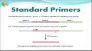 انواع پرایمر و کاربرد آنها (1)