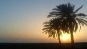 شروه بوشهری سوزناک ویژه عاشورا