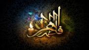 مداحی شهادت حضرت زهرا (در مدینه شد بی مادر حسین زهرا(س) )