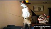 گربه ی چکمه پوش