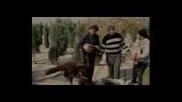 قسمتی کوتاه و دیدنی از فیلم طنز چلچله با بازی علی صادقی