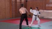 مبارز دختر کاراته باز با مردی که رشتهSTREETFIGHTER کار میکنه