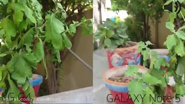 LG G4 VS GALAXY NOTE 5 camera test