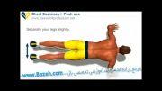 حرکات بدن سازی بازو - شنا - Push Up