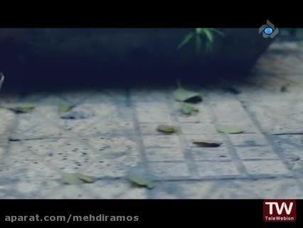 موزیک ویدئو«رفاقت ما»از علی اکبر قلیچ