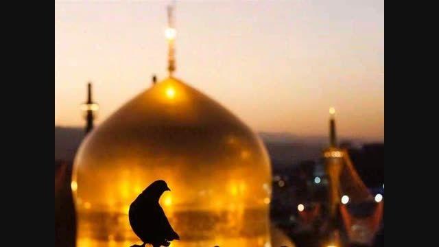 نماهنگ امام رضا با صدای حامد محضر نیا ...