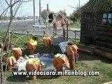 ابتكار شهرداری شهر یاقوت های سرخ(ساوه) در نوروز 91 در میدان های شهر