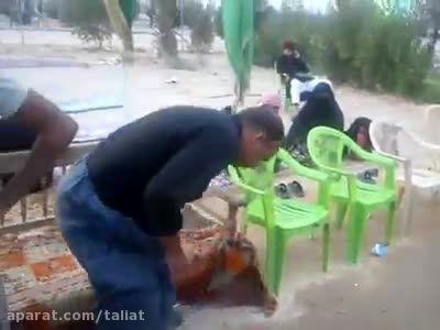 پذیرایی با اخلاص عراقی ها از زائران حسین