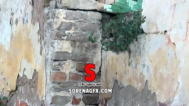 دانلود فوتیج نشستن گربه سیاه بر سر دیوار