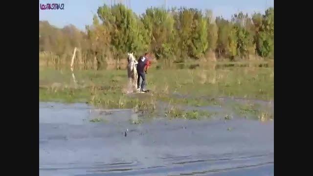 اسکی روی آب با اسب_آخر خنده+فیلم ویدیو کلیپ باحال طنز
