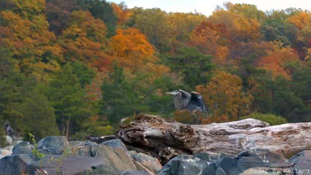 طبیعت زیبا همراه با موسیقی آرامش بخش 6 (HD)