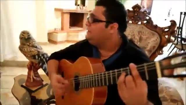 گیتار و ساز دهنی سنتی بسیار زیبا