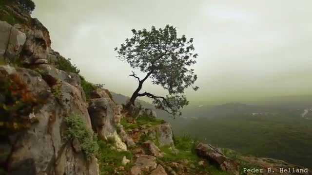 طبیعت زیبا همراه با موسیقی آرامش بخش 7 (HD)