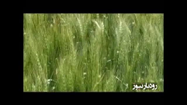 """موسیقی """"ورا ورا"""" کرمانجی رستم رستمی پور رودبار"""