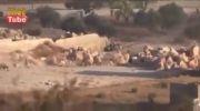 شلیک تانک ارتش سوریه به فیلمبردار و تنی چند از شورشیان