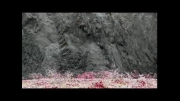 تیزر تبلیغاتی جذاب سونی برای تلویزیون