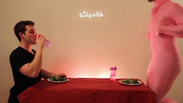 حیوانات چطور غذا می خورند؟ - قسمت اول