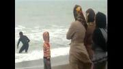 شکار تاسف بار سگ دریایی در ساحل بابلسر