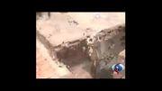 حمله ناگهانی پلنگ به اهالی روستا