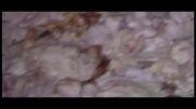 ساخت صابون عجیب  در تهران