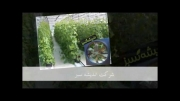 فن و هواکش مرغداری و گلخانه