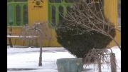 شهر توریستی سرعین در جشنواره زمستانی