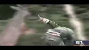 حمله حیوانات (به انسان )