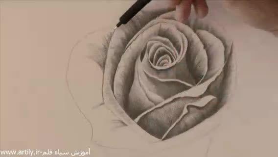 آموزش طراحی سیاه قلم گل رز