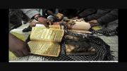 خشم مقدس (مسلمانان افغانستان)