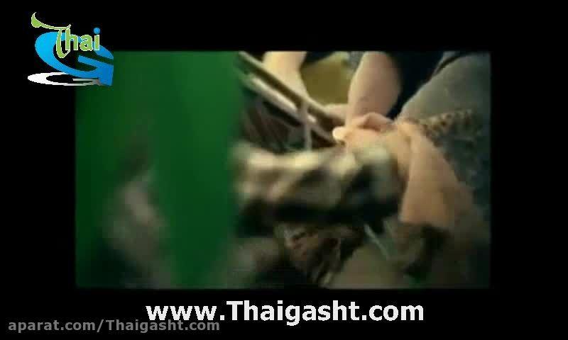 کلیپ های تبلیغاتی تایلند 2 (www.Thaigasht.com)